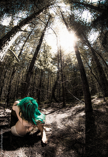 Alone in the woods