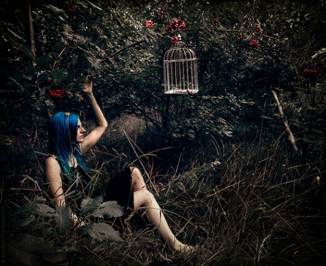 Of trapped dreams and empty cages